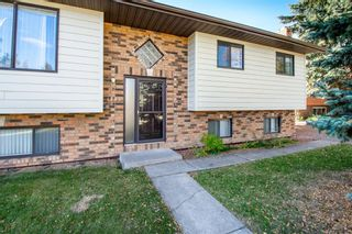 Photo 35: 1445 Idaho Street: Carstairs Detached for sale : MLS®# A1148542