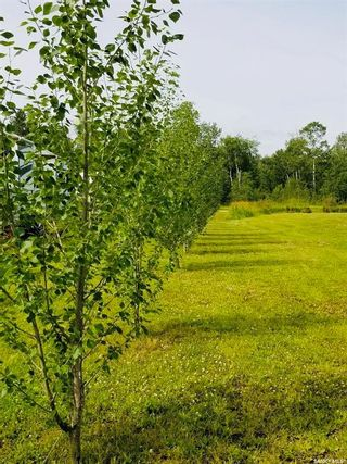 Photo 4: Lot 1 All Seasons Dr.-South of Powm Beach in Turtle Lake: Lot/Land for sale : MLS®# SK841173