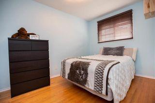Photo 17: 146 Danbury Bay in Winnipeg: Crestview Residential for sale (5H)  : MLS®# 202023417