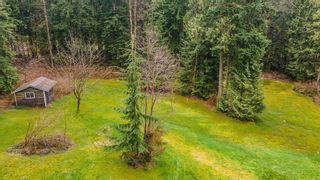 Photo 7: 12414 MCNUTT Road in Maple Ridge: Northeast House for sale : MLS®# R2560793