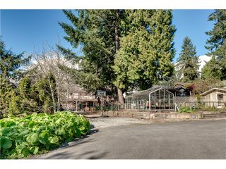 Photo 5: 1424 ROSS Avenue in Coquitlam: Central Coquitlam House for sale : MLS®# V1116916