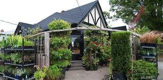 Photo 22: 603 Hampshire Rd in : OB South Oak Bay House for sale (Oak Bay)  : MLS®# 878132