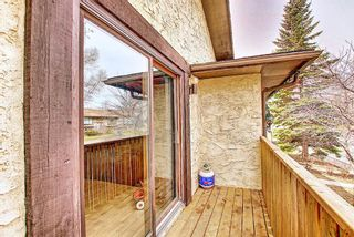 Photo 12: 1137 Berkley Drive NW in Calgary: Beddington Heights Semi Detached for sale : MLS®# A1136717