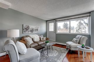 Photo 5: 211 7007 4A Street SW in Calgary: Kingsland Apartment for sale : MLS®# A1086391