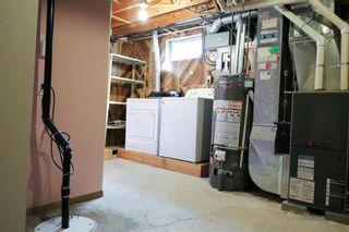 Photo 21: 52 Red Oak Drive in Winnipeg: Oakwood Estates Residential for sale (3H)  : MLS®# 202018136