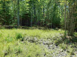 Photo 4: 8 Shady Lane in Loch Broom: 108-Rural Pictou County Vacant Land for sale (Northern Region)  : MLS®# 202117520