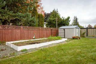 Photo 44: 599 23rd St in : CV Courtenay City House for sale (Comox Valley)  : MLS®# 857975