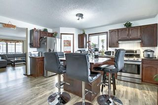 Photo 12: 47 Appleburn Close SE in Calgary: Applewood Park Detached for sale : MLS®# A1049300