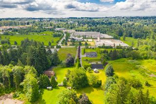 Photo 8: 19837 86 Avenue in Langley: Willoughby Heights House for sale : MLS®# R2531982
