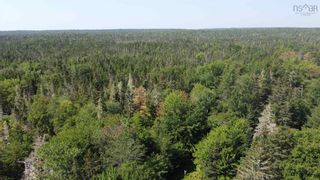 Photo 14: 1373 West Sable Road in Sable River: 407-Shelburne County Vacant Land for sale (South Shore)  : MLS®# 202122222