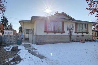 Main Photo: 3102 Doverville Crescent SE in Calgary: Dover Semi Detached for sale : MLS®# A1088177