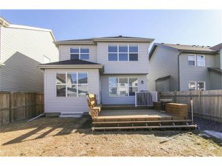 Photo 35: 659 COPPERPOND Circle SE in Calgary: Copperfield House for sale : MLS®# C4001282