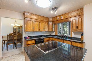 Photo 14: 6 WINDERMERE Crescent: St. Albert House for sale : MLS®# E4248081