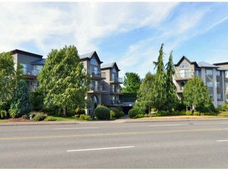 """Photo 1: 118 32725 GEORGE FERGUSON Way in Abbotsford: Abbotsford West Condo for sale in """"Uptown"""" : MLS®# F1417772"""