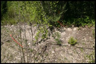Photo 52: 21 6500 Southwest 15 Avenue in Salmon Arm: Panorama Ranch Vacant Land for sale : MLS®# 10230290