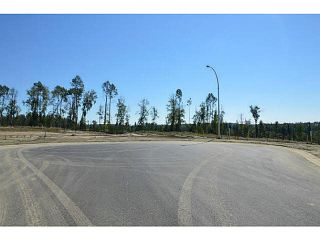 "Photo 19: LOT 12 BELL Place in Mackenzie: Mackenzie -Town Land for sale in ""BELL PLACE"" (Mackenzie (Zone 69))  : MLS®# N227305"