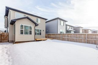 Photo 32: 1200 BRIGHTONCREST Common SE in Calgary: New Brighton Detached for sale : MLS®# A1066654