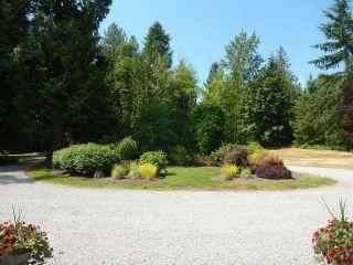 Photo 17: 27049 18 AV in Langley: Otter District House for sale : MLS®# F1445983