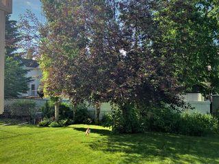 Photo 29: 146 Cranfield Crescent SE in Calgary: Cranston Detached for sale : MLS®# A1095687