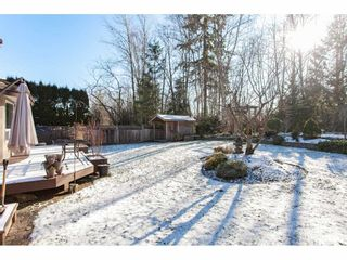 """Photo 20: 10635 CHESTNUT Place in Surrey: Fraser Heights House for sale in """"Glenwood"""" (North Surrey)  : MLS®# R2338110"""