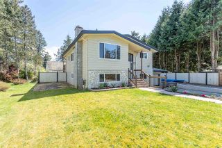 """Photo 3: 4516 199A Street in Langley: Langley City House for sale in """"Mason Heights"""" : MLS®# R2570140"""