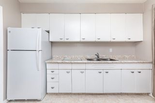 Photo 14: 16442 104A Avenue in Edmonton: Zone 21 House for sale : MLS®# E4254644