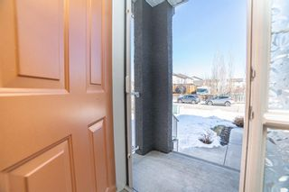 Photo 36: 148 Cove Crescent: Chestermere Detached for sale : MLS®# A1081331