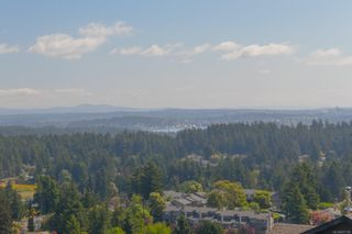 Photo 60: 3409 Karger Terr in : Co Triangle House for sale (Colwood)  : MLS®# 877139