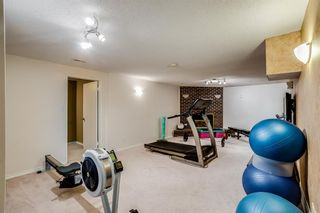 Photo 12: 6044 4 Street NE in Calgary: Thorncliffe Detached for sale : MLS®# A1115924