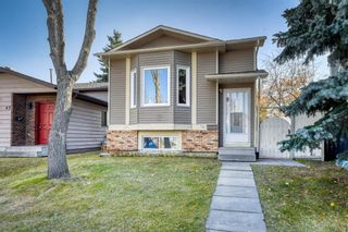 Main Photo: 39 Sandpiper Mews NW in Calgary: Sandstone Valley Detached for sale : MLS®# A1155241