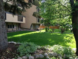 Photo 11: 303 617 56 Avenue SW in CALGARY: Windsor Park Condo for sale (Calgary)  : MLS®# C3605417