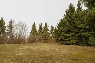 Photo 11: 47443 778 Highway: Rural Leduc County House for sale : MLS®# E4241731