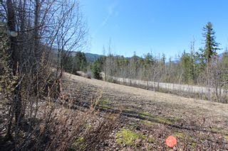 Photo 13: Lot 11 Ivy Road: Eagle Bay Vacant Land for sale (South Shuswap)  : MLS®# 10229941