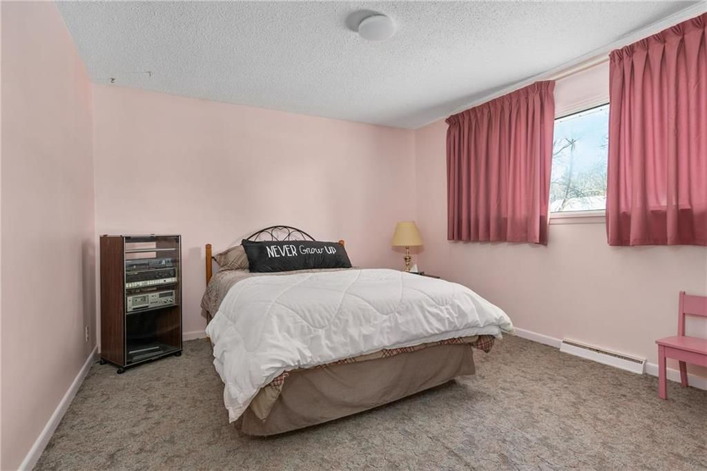 Photo 9: Photos: 219 TAIT Street in Selkirk: R14 Residential for sale : MLS®# 202000953