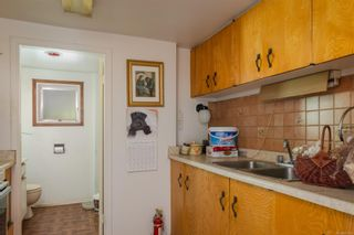 Photo 14: 3976 Wilkinson Rd in : SW Strawberry Vale House for sale (Saanich West)  : MLS®# 875160