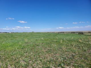 Photo 14: 80034 315 Avenue E: Rural Foothills County Residential Land for sale : MLS®# A1109103