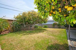Photo 31: House for sale : 3 bedrooms : 3428 Udall St. in San Diego