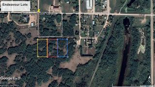 Photo 4: E Second Street South in Endeavour: Lot/Land for sale : MLS®# SK856274