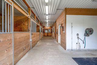 Photo 38: 796260 E 3rd Line in Mulmur: Rural Mulmur House (Bungalow) for sale : MLS®# X5265550