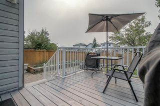 Photo 39: 128 Mt Aberdeen Circle SE in Calgary: McKenzie Lake Detached for sale : MLS®# A1131122