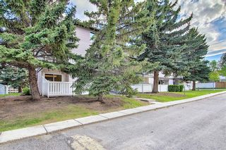 Photo 35: 1 3800 FONDA Way SE in Calgary: Forest Heights Row/Townhouse for sale : MLS®# C4300410