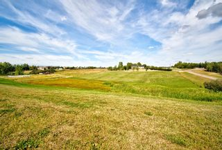 Photo 50: 291092 Yankee Valley Boulevard: Airdrie Detached for sale : MLS®# A1028946