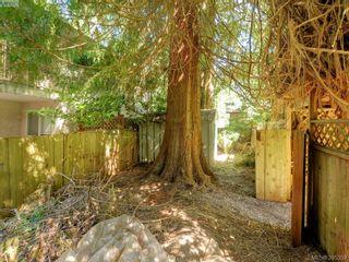 Photo 14: 5168 Del Monte Ave in VICTORIA: SE Cordova Bay House for sale (Saanich East)  : MLS®# 792681