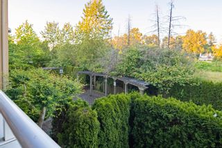 """Photo 20: 210 13780 76 Avenue in Surrey: East Newton Condo for sale in """"Earls Court"""" : MLS®# R2596740"""