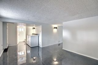 Photo 31: 218 19 Avenue NW in Calgary: Tuxedo Park Detached for sale : MLS®# A1073840