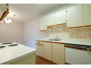 Photo 7: # 211 515 ELEVENTH ST in New Westminster: Uptown NW Condo for sale : MLS®# V1100230