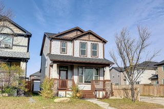 Photo 1: 3 Skyview Springs Crescent NE in Calgary: Skyview Ranch Detached for sale : MLS®# A1153447