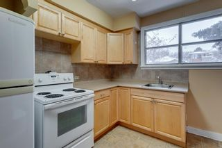 Photo 8: 515 20 Avenue NW in Calgary: Mount Pleasant Detached for sale : MLS®# A1050445