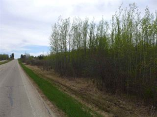 Photo 31: 50 Ave RR 281: Rural Wetaskiwin County Rural Land/Vacant Lot for sale : MLS®# E4191216
