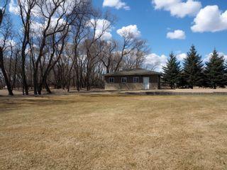 Photo 43: 695 Mclenaghen Drive in Portage la Prairie: House for sale : MLS®# 202109619